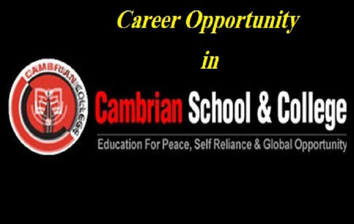 Cambrian School & College Job Circular December 2016